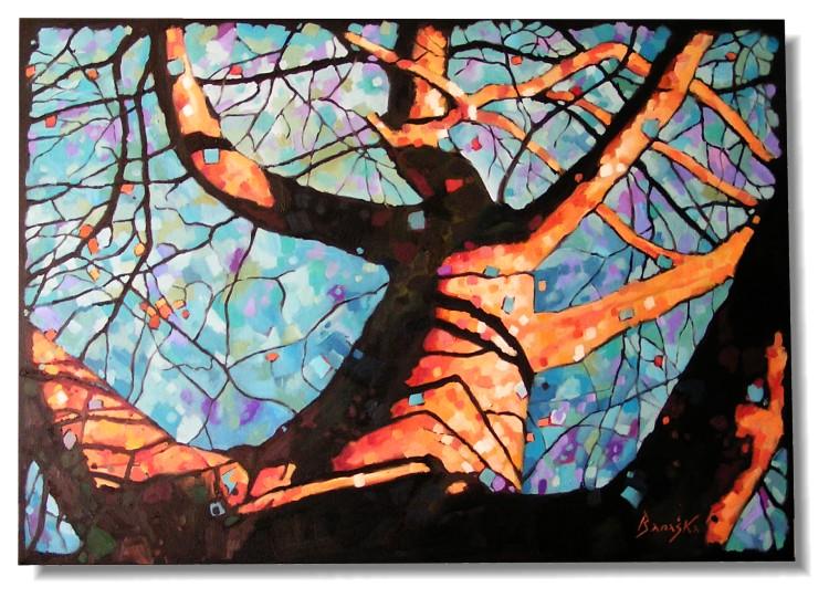 drzewoswiatla750