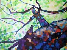 drzewohani2