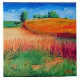 kaszuby-wrzesień-1m